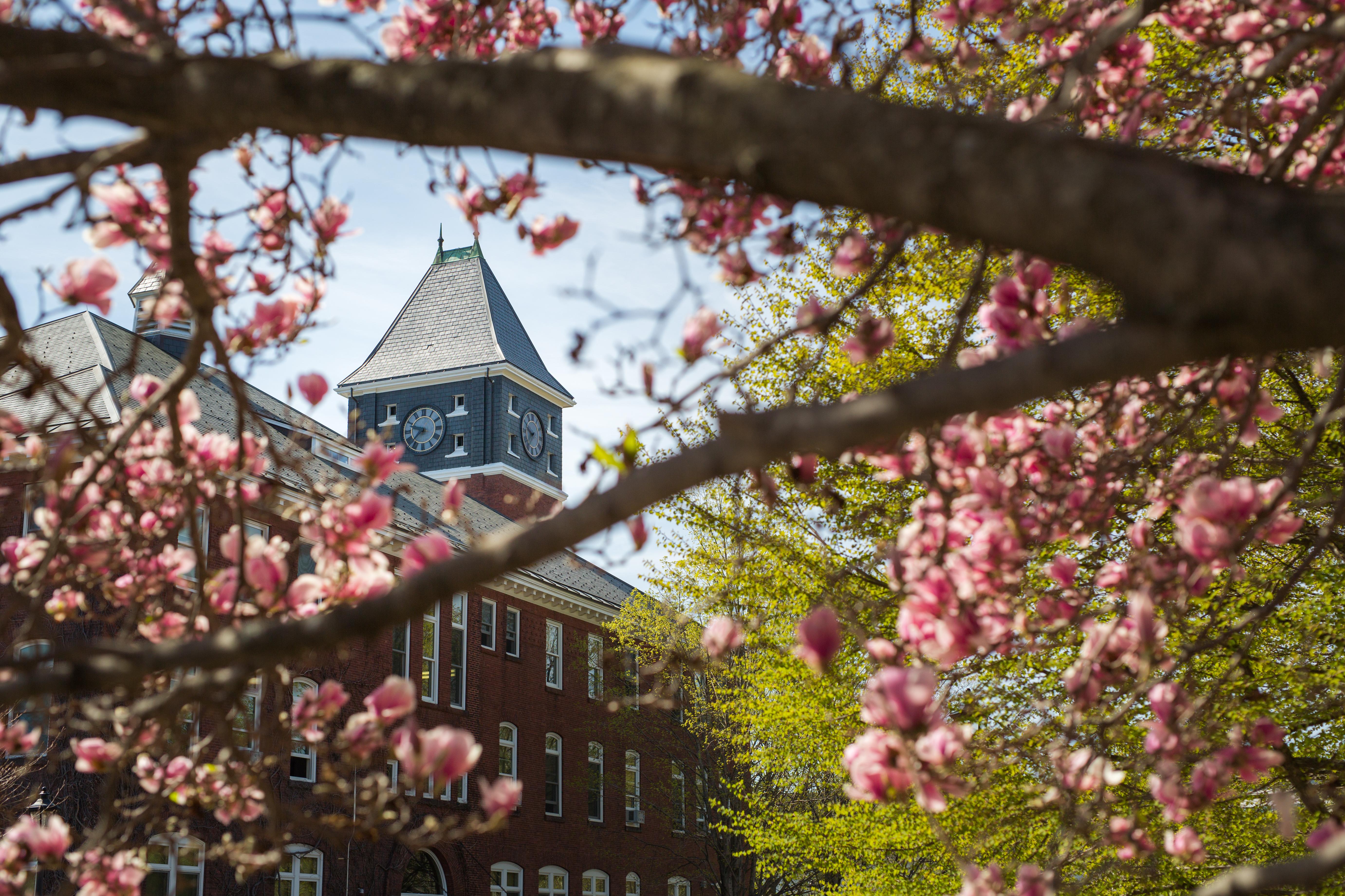 Campus spring 5069