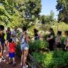 Garden italy trip