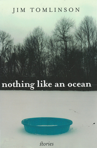 Nothing like ocean book cover2