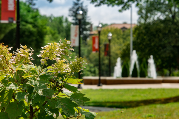 Ohio wesleyan green campus
