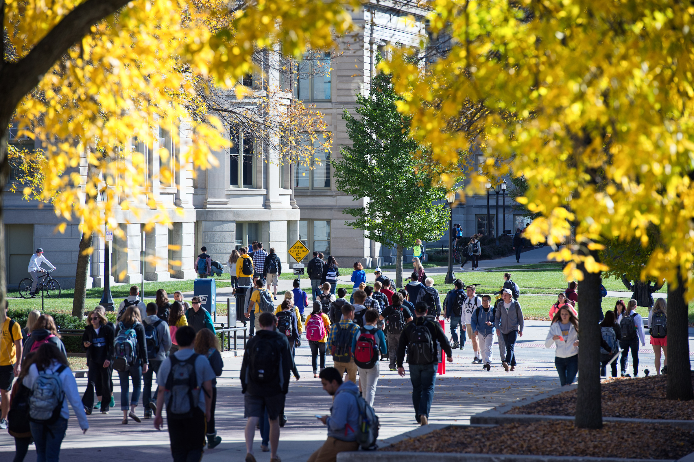 2015 10 14 fall day on campus jatorner 007