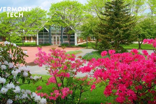 Spring randolph center background