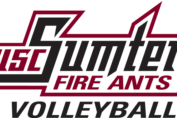 Fireants logo volleyball cmyk