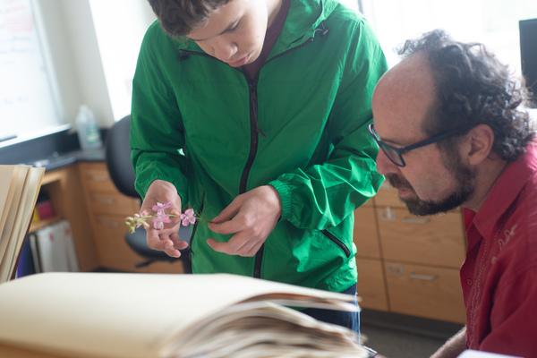 Biologyresearch colegeisslerrichardniesenbaum 50