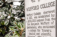 1428333132 wofford writing