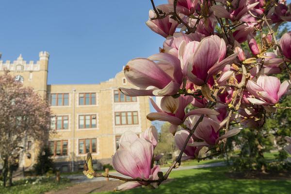 Campus spring003