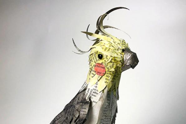 Harvey cockatiel by bridget kline