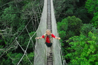 Canopy walkway in amazonian peru photo meg lowman