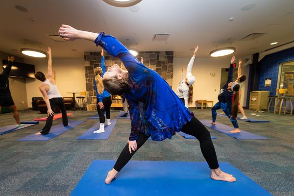 Erica sharpe yoga 20178