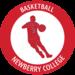 Basketballmeritbadgealone