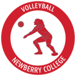 Volleyballmeritbadgealone