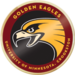 U of minn golden eagle