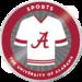 Final merit badges sports
