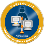 Nurse213 simulation