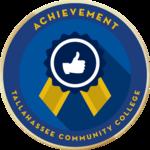 Merit badges achievement
