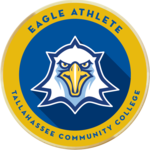 Merit badges eagle athlete