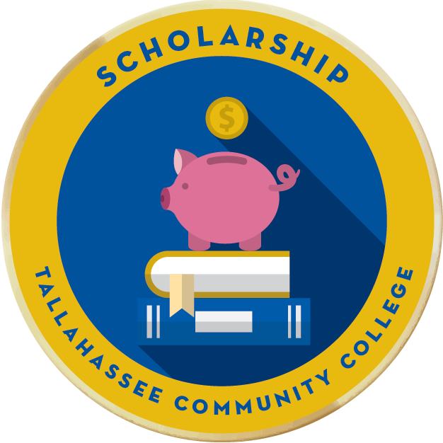 Merit badges scholarship