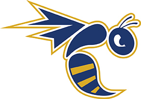 Color wasps logo