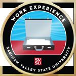Svsu work experience