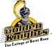 Golden knights logo %282%29