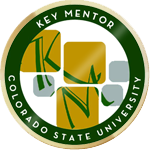 Key mentor