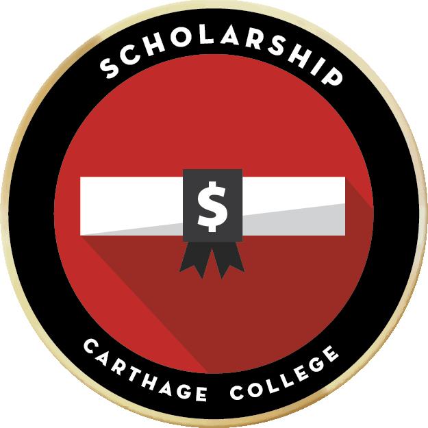 Meritbadges scholarship