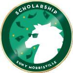 Merit scholarship b