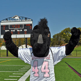 Morrisville state college mustang mascot
