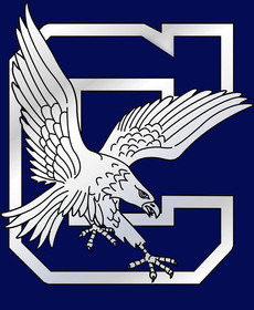 Clover hs mascot all blue