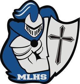 D s mlhs logo