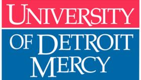 Det mercy logo