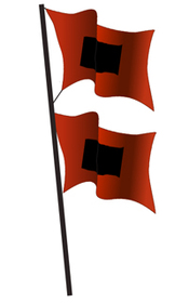 Shahs logo flags