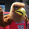 Red the Redhawk