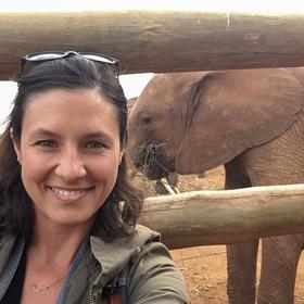 World elephant day 6