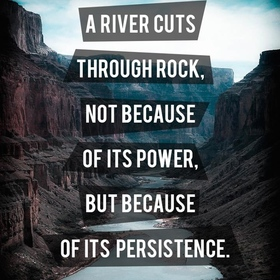 A river cuts through rock not because of its power but because of its persistence