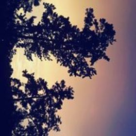 Photo?1528150722