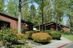 Country Club Village Apartments In Rohnert Park Ca