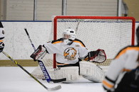 Amanda Twedt's Women's Ice Hockey Recruiting Profile