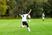 Lucas Cadete Men's Soccer Recruiting Profile