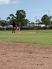 Alex Hunter Baseball Recruiting Profile