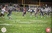 Shane Thornton Football Recruiting Profile