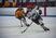 Coby Fox Men's Ice Hockey Recruiting Profile