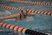 Olivia Moyer Women's Swimming Recruiting Profile