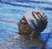 Reese Cobb Men's Swimming Recruiting Profile