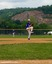 Jack Veenema Baseball Recruiting Profile