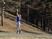 Aileen Stevens Softball Recruiting Profile