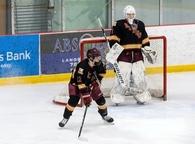 Andrew Webb's Men's Ice Hockey Recruiting Profile