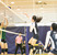 Ava Winterrowd Women's Volleyball Recruiting Profile