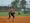 Athlete 12034 small