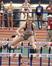 Breann Burns Women's Track Recruiting Profile